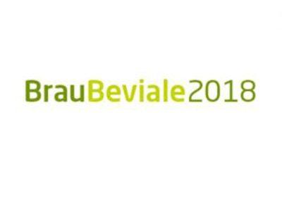 SPANISH CRAFT BEER CORNER EN BRAUBEVIALE 2018